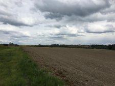 Prodej stavební parcely, 800m<sup>2</sup>, Borovany - Radostice, 680.000,- Kč