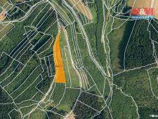 Prodej lesa, 5445m<sup>2</sup>, Lhota u Vsetína, 174.240,- Kč