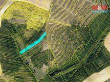 Prodej lesa, 3415m<sup>2</sup>, Hustopeče, 167.335,- Kč
