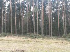 Prodej lesa, Štěpánovice, 200.000,- Kč