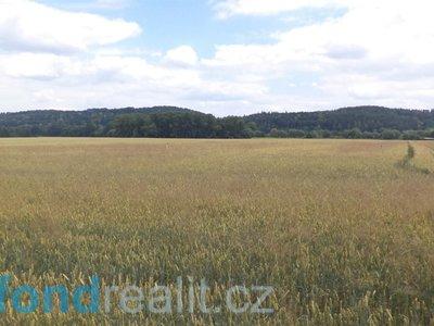 Prodej ostatních pozemků 30364 m² Roudné