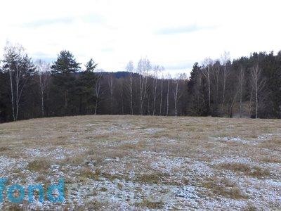 Prodej ostatních pozemků 2180 m² Horní Stropnice