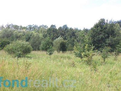 Prodej ostatních pozemků 12879 m² Doudleby