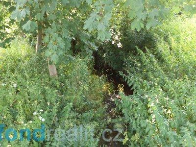 Prodej ostatních pozemků 154 m² Staré Buky