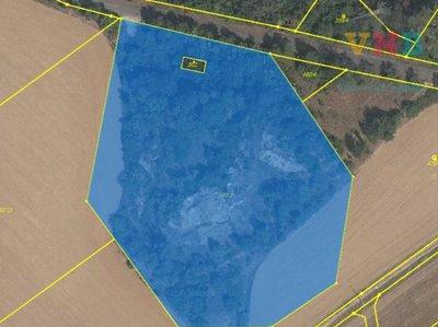 Prodej ostatních pozemků 11459 m² Kokory